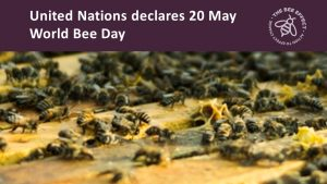 On the 20th December the United Nations General Assembly declared 20 May a World Bee Day. The resolution, co-sponsored by 115 UN Member States