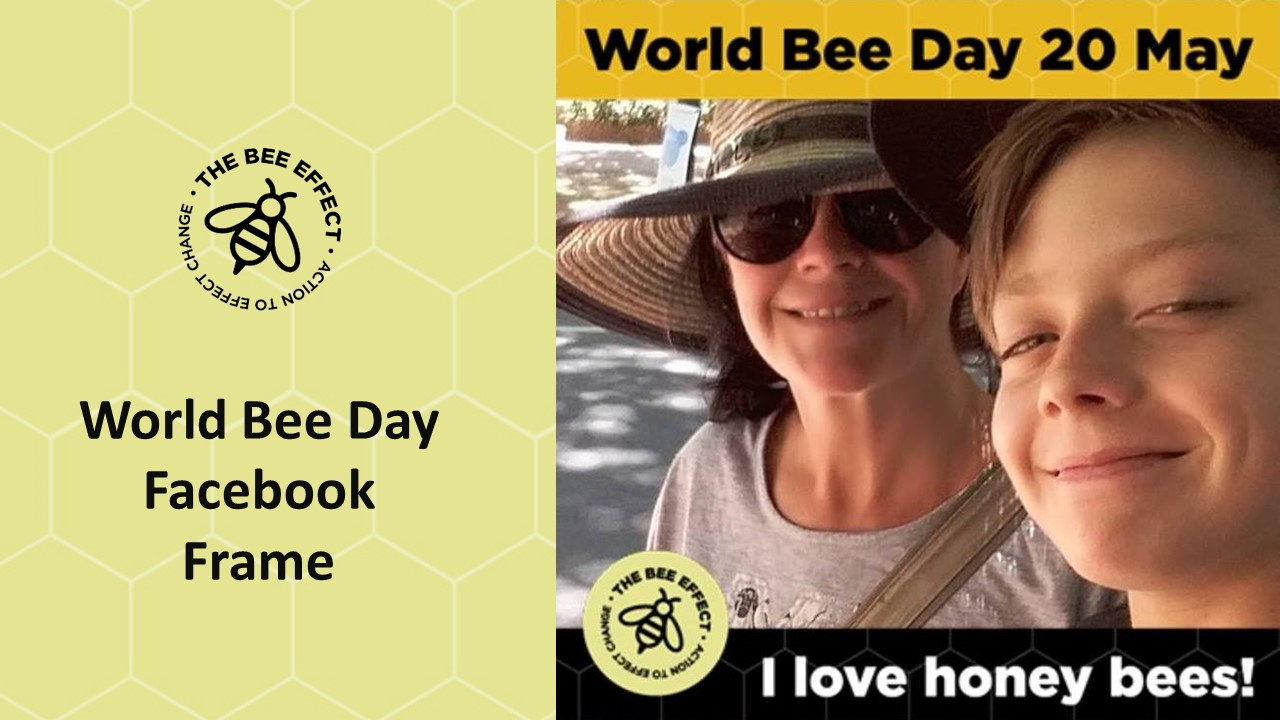 Help raise awareness for our bees this World Bee Day- 20th of May - by wearing our World Bee Day Facebook profile picture frame.