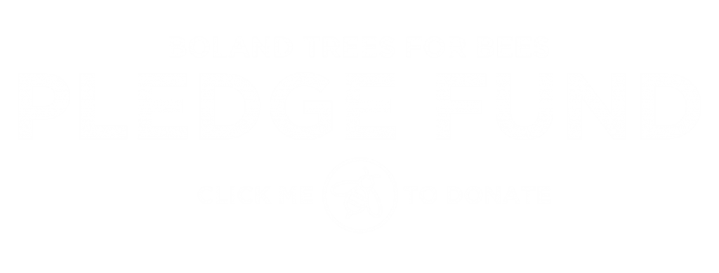 #TheTreeEffect with Boland Trees for Bees Pledge Fund_The Bee Effect
